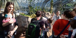 snugglers at United States Botanic Garden